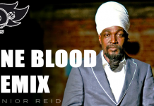 JUNIOR REID ONE BLOOD REMIX FIREDANCECREW
